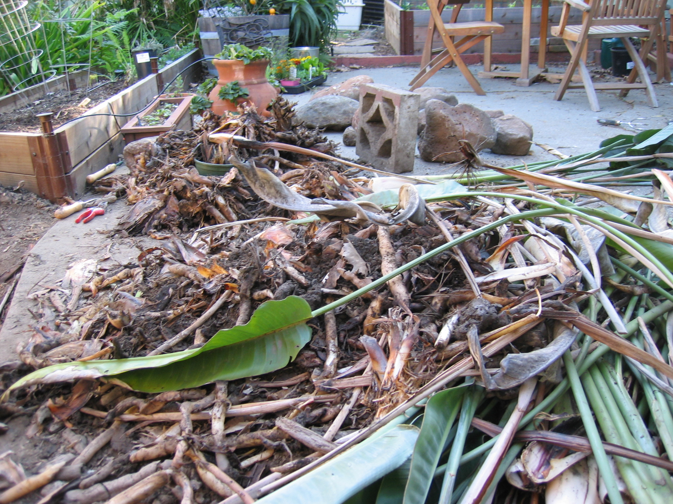 backyard archaeology city homestead